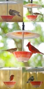 Bird feeder made from a tea cup